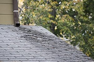Roof Repair Specialists